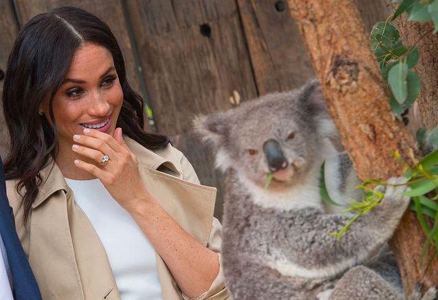 Meghan Markle enceinte dévoile son petit ventre rond à Sydney