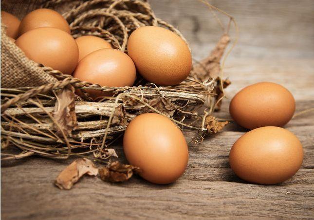Peut-on vraiment congeler des œufs ?