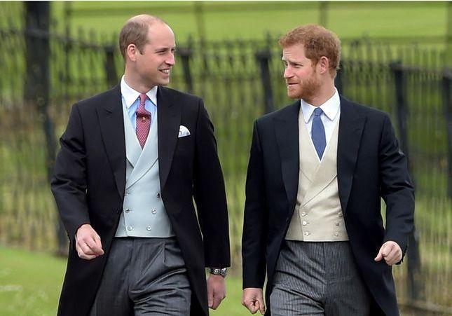 Prince Harry : la drôle de réaction du prince William aux fiançailles de son frère