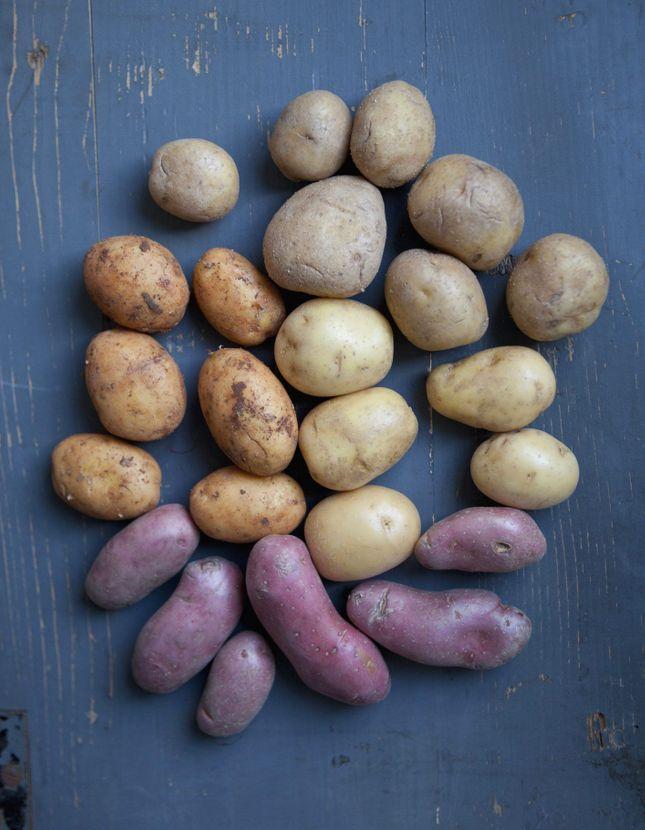 Elle table passion de la cuisine et plaisirs de la table elle table - Comment conserver des pommes de terre coupees ...