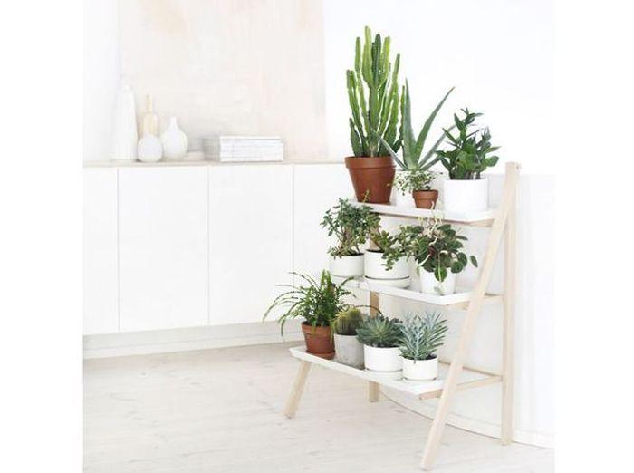 plantes et fleurs 15 id es pour d corer mon int rieur. Black Bedroom Furniture Sets. Home Design Ideas