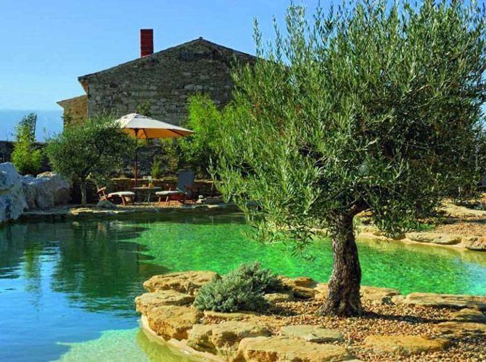 Les piscines naturelles retour aux sources elle d coration for Piscine quintin