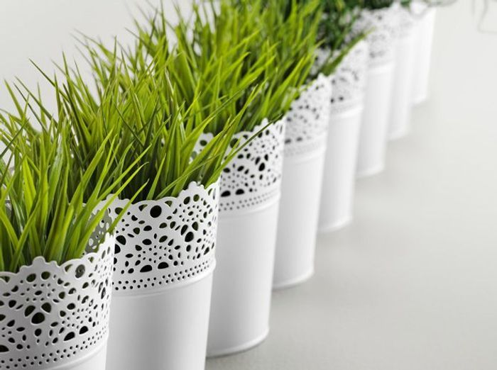 Cache pot design for Ikea plantes