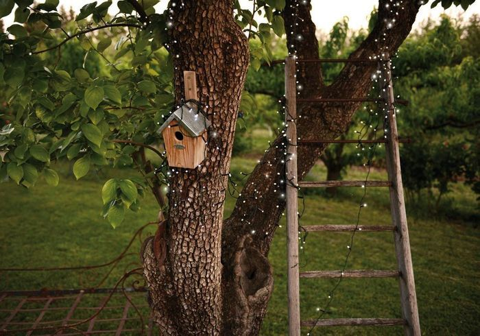 Entourez vos troncs d'arbre de guirlandes lumineuses solaires dans le jardin