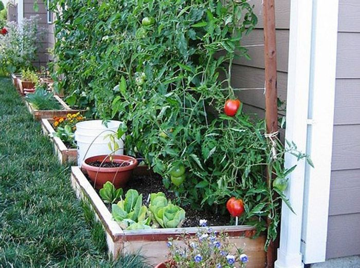 Jardin design de style récup