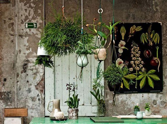 On cr e une for t tropicale la maison elle d coration for Decoration maison tropicale