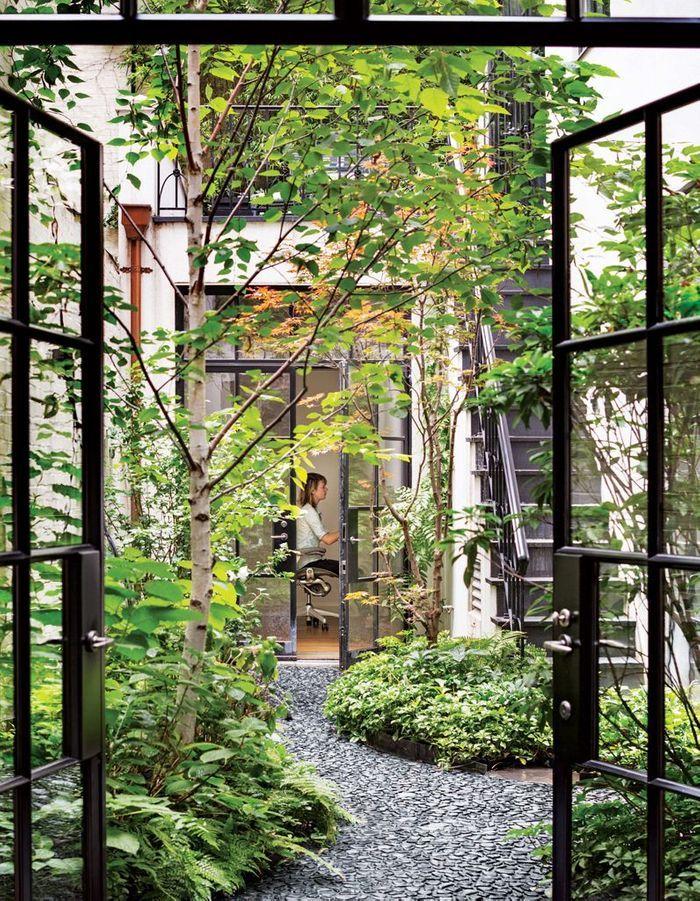 Planter un arbre dans le patio