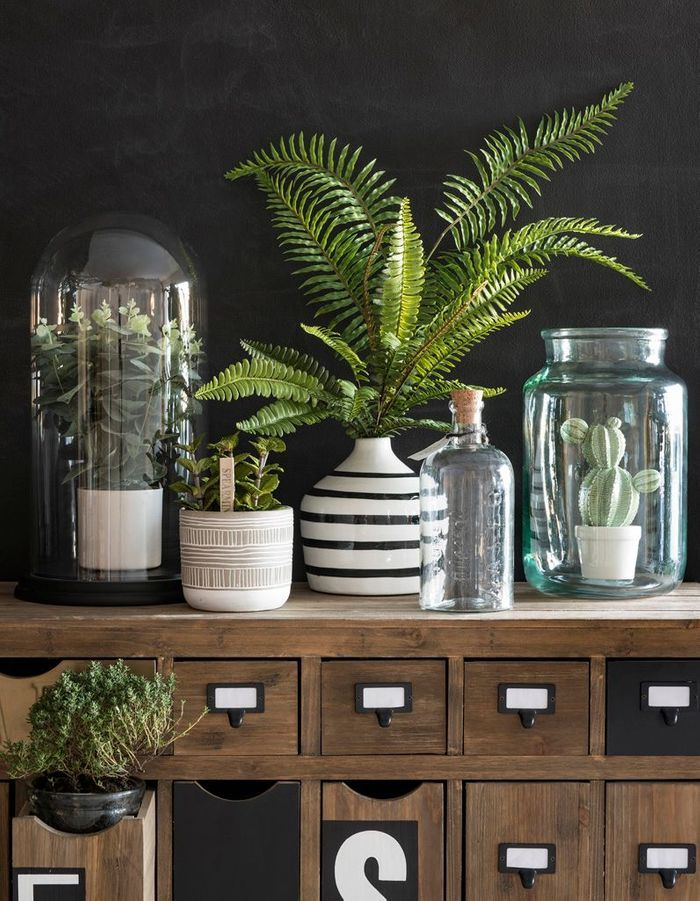 Insérer un cactus dans un vase esprit terrarium