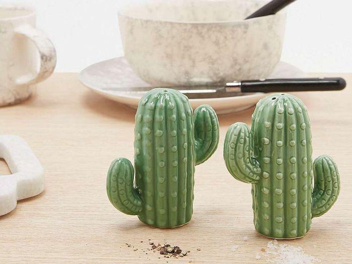 Une salière et un poivrier cactus