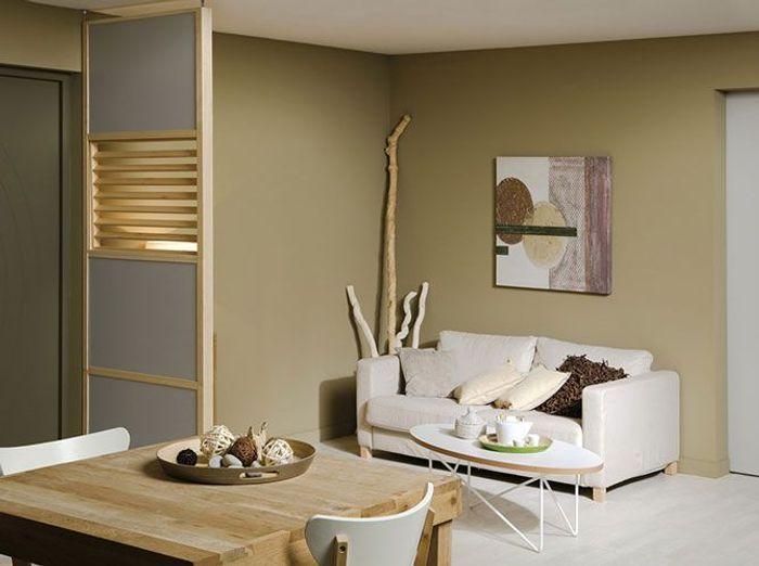 Emejing Cloison Amovible Appartement Gallery - lionsofjudah.us ...