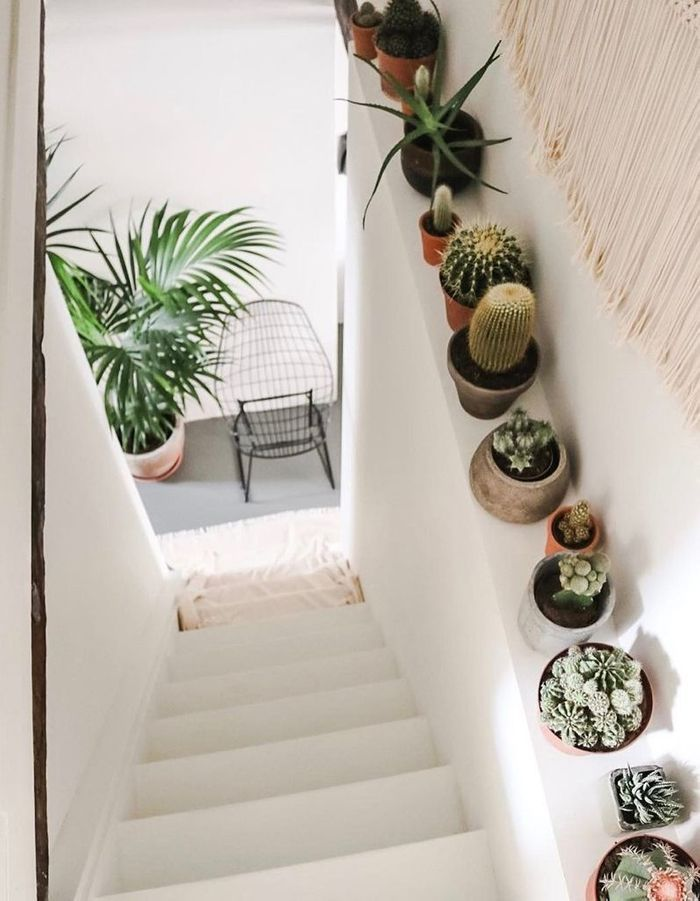 Faites confiance au duo succulente et macramé pour un escalier déco