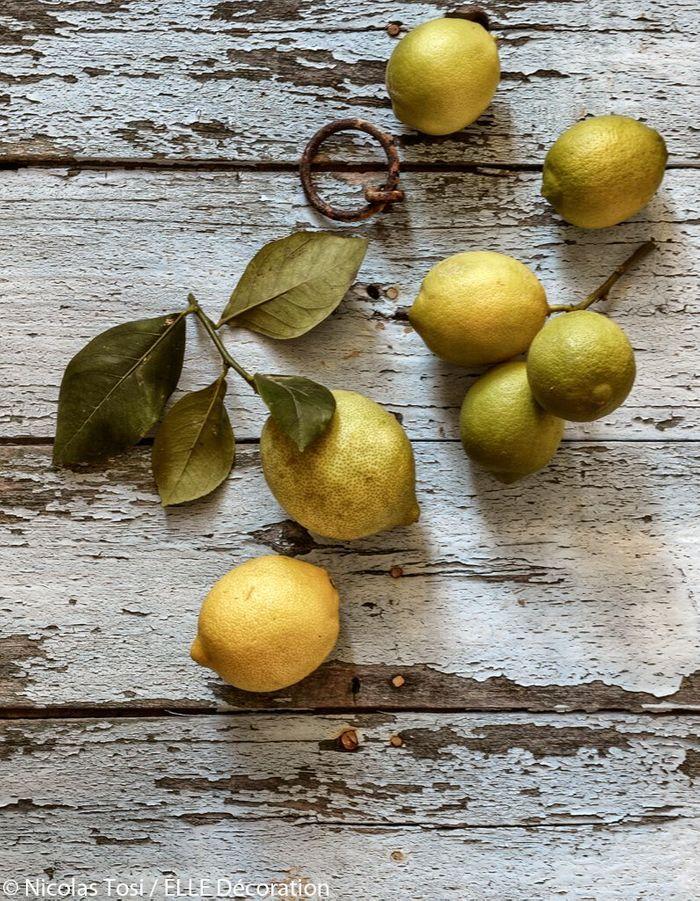 Les citrons du verger
