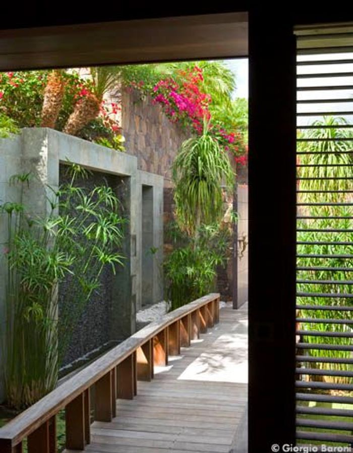 Maison de Johnny Hallyday à Saint-Barth : le jardin