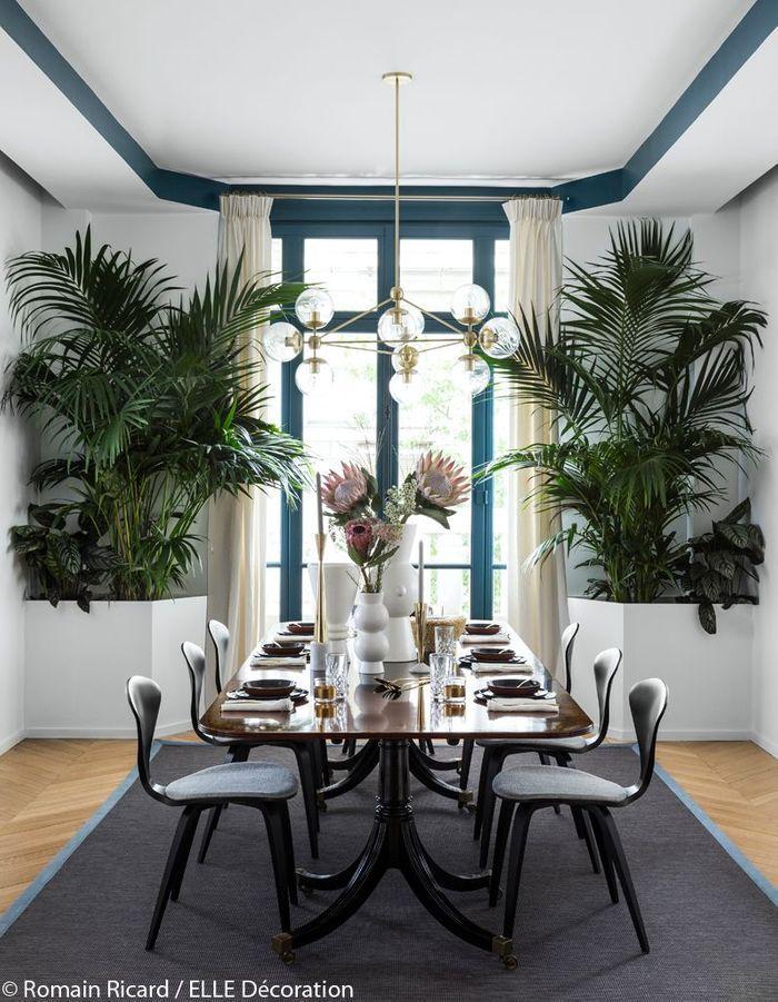 Une salle à manger verdoyante