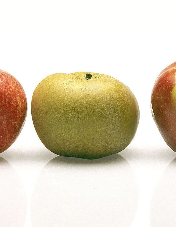 reinette grise du canada quelle pomme pour quelle recette elle table. Black Bedroom Furniture Sets. Home Design Ideas