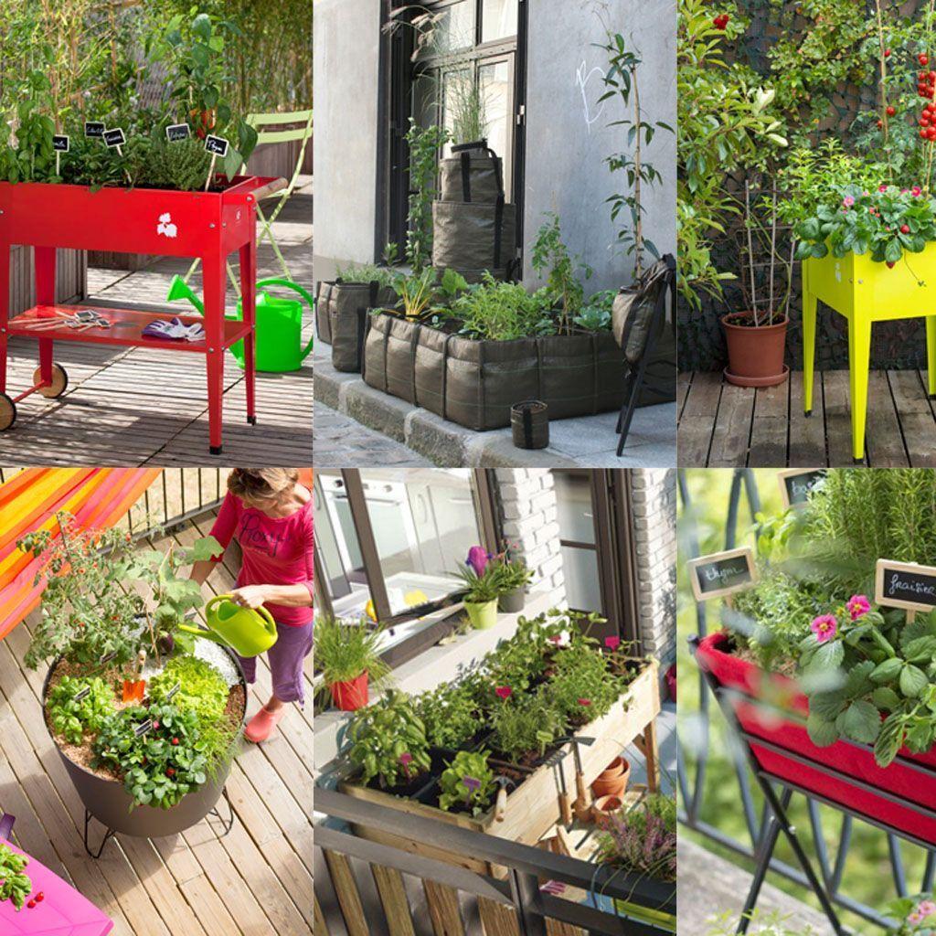 Comment Faire Un Beau Jardin comment réaliser un petit potager ? - elle décoration