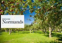 Notre sélection de prénoms Normands