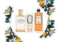 Fleur d'oranger : les indispensables de cet été