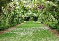 Devenez jury pour le Prix du Jardin de l'Année !