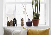 Oui aux plantes dépolluantes pour un intérieur sain