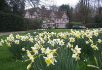 Visite d'un jardin anglais dans la campagne britannique