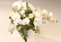 Art floral : les tendances du printemps-été 2014