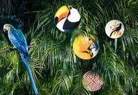 L'inspiration déco : les assiettes tropicales