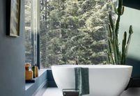 Plantes : le green power envahit la salle de bains !