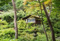 Tokyo : nos meilleures adresses déco