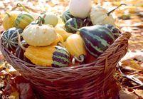 50 recettes qui vont vous faire aimer l'automne