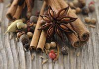 Noël : comment utiliser des épices à pain d'épices ?