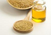 Tout savoir sur l'huile de lin