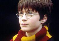 Harry Potter: sa vie avant Poudlard mise en scène au théâtre