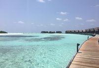 8 bonnes raisons de partir aux Maldives