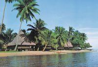 Tiki Pop, l'expo qui donne envie de vacances sous les cocotiers