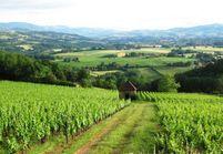 Virée vins au féminin dans le Beaujolais