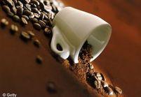 La caféine et la cellulite