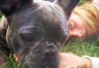 Dogfie, catfie… Le selfie animal, la nouvelle geekerie des stars !