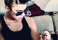 Justin Bieber : sa dette de 11 000 dollars à l'Allemagne à cause de son singe !