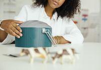 Faut-il fixer des quotas pour qu'il y ait plus de filles dans les écoles d'ingénieurs ?