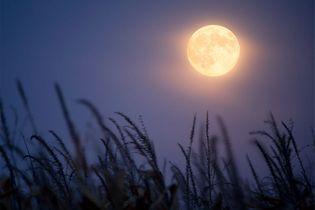 Que retenir de la pleine lune en Verseau du 24 juillet ?