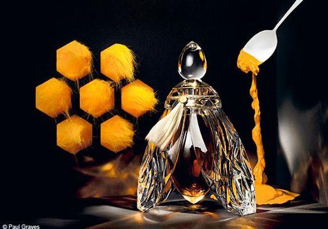 Et Contes Parfums Elle Fées De FKTl13cJ