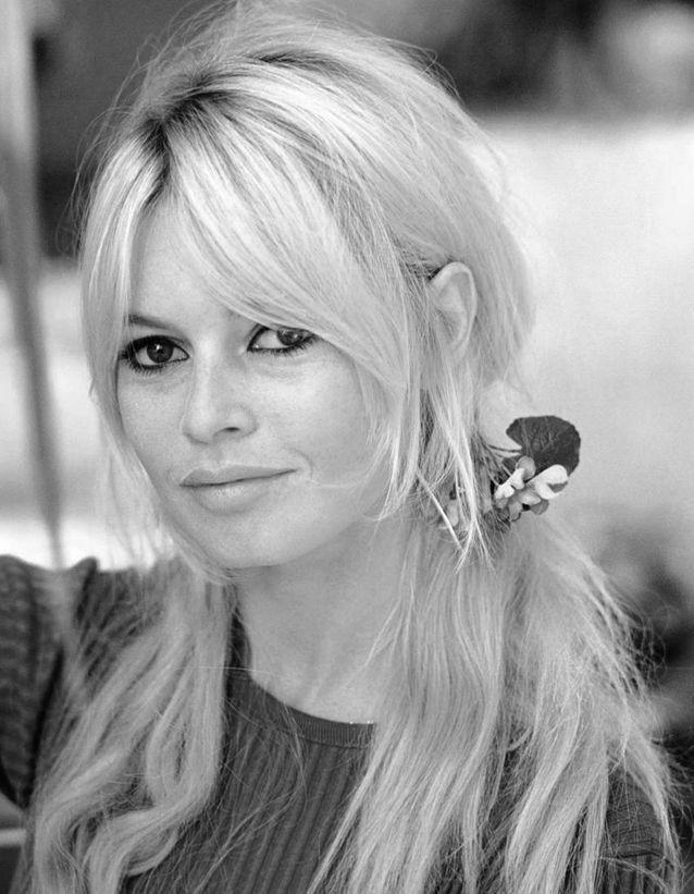 Les couettes basses de Brigitte Bardot