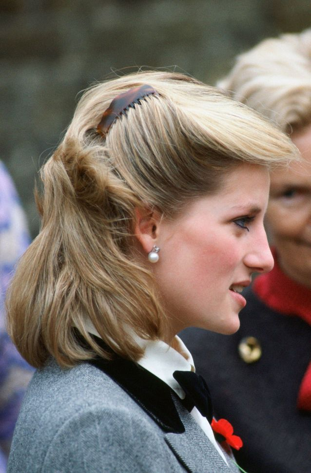Diana et sa chevelure 80's