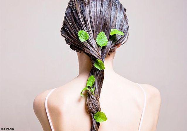Soins naturels pour cheveux
