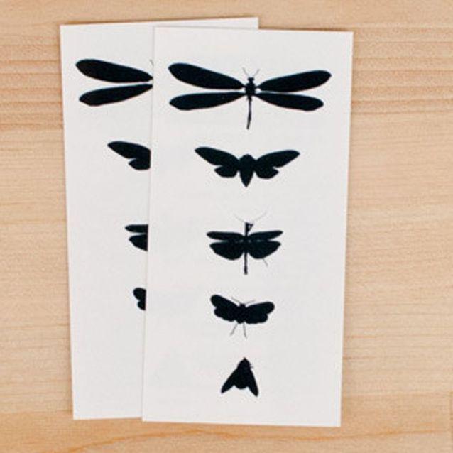Tatouages éphémères Bug Study, Tattly