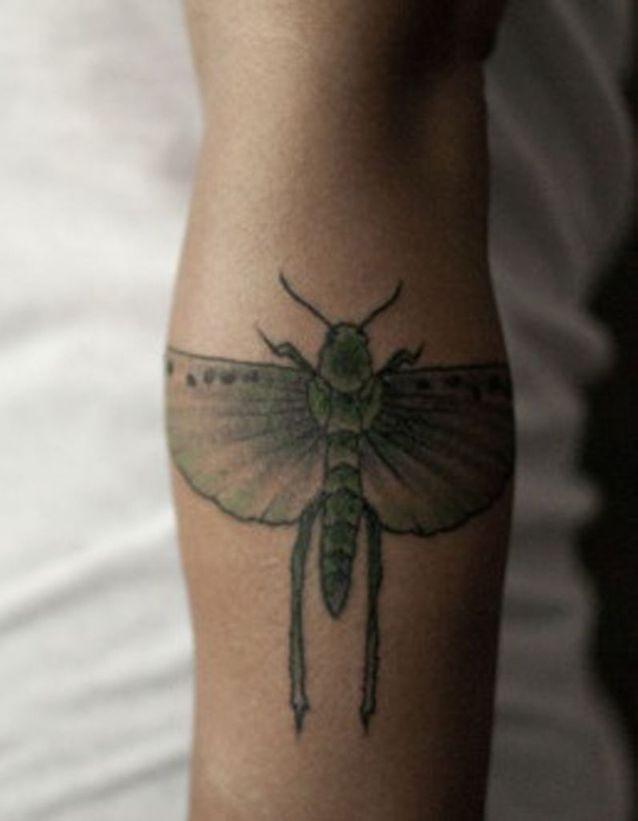 Tatouage bras papillon