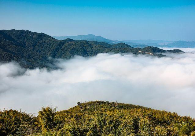 La montagne où se situe le benjoin