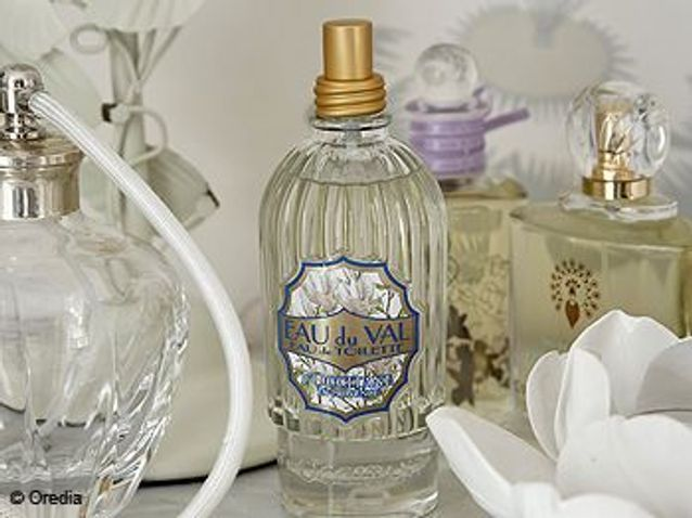 Les parfums tendance de l'hiver