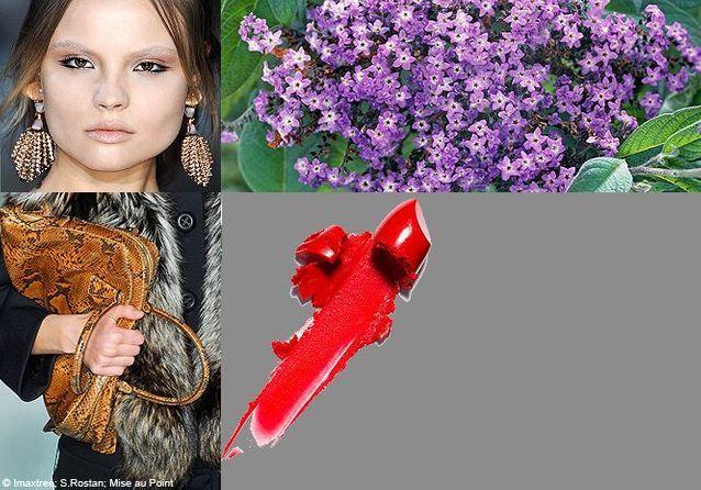 Parfum : des fragrances de créateurs